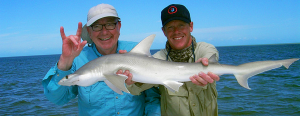 Cleaning a Shark is easy as long as you do it quickly after the catch.