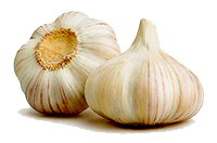 Perfect Shark Marinade Garlic