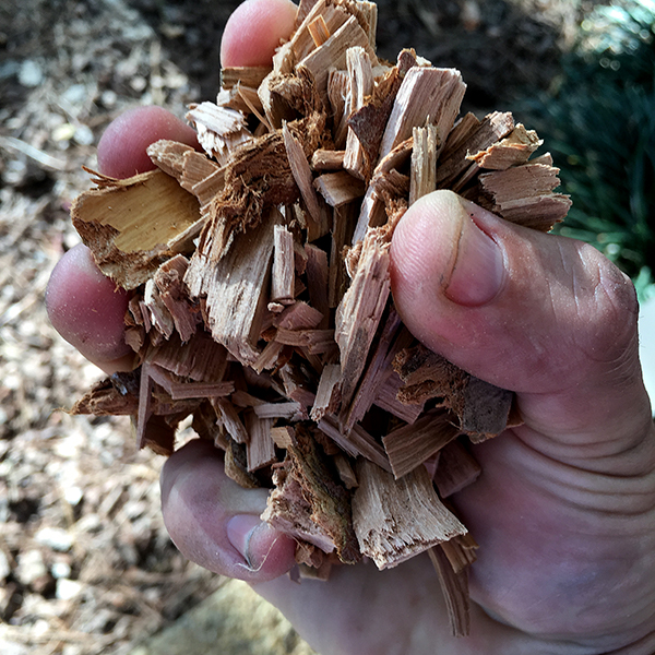 Add a handful of apple wood to the grill/smoker and cover.