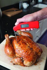Smoked Turkey Thermapen