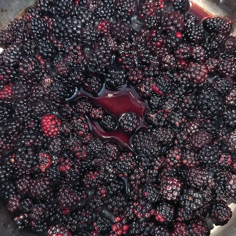 The beginnings of a simple blackberry compote, made with freshly picked blackberries, honey, balsamic vinegar and fresh lemon.